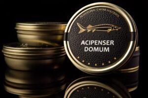 Черная икра осетровая Acipenser Domum️-2